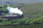 Leander on Lunds Viaduct - Chris Taylor