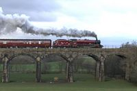 On Capernwray Viaduct 2 - Chris Taylor